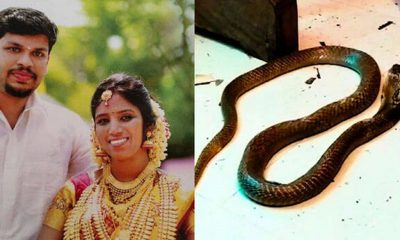 சூரஜ்-உத்ரா